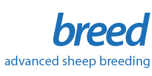Advanced Sheep Breeding
